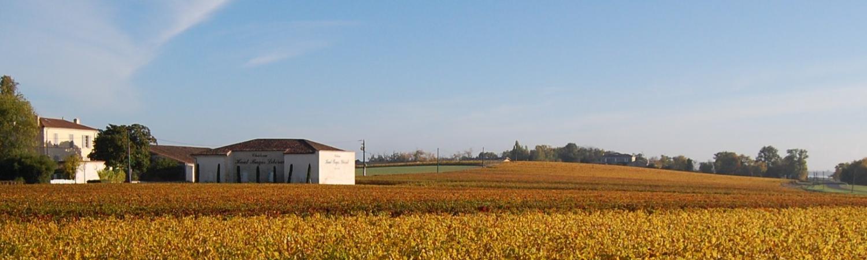 Gonzague & Claire Lurton Vineyards